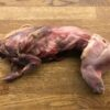 Skinned Gutted Rabbit Raw Dog Food